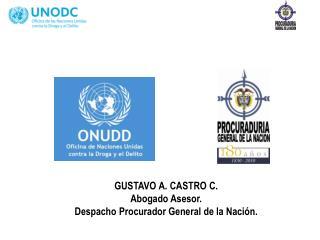 GUSTAVO A. CASTRO C. Abogado Asesor.  Despacho Procurador General de la Nación.