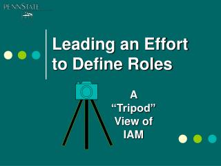 Leading an Effort to Define Roles