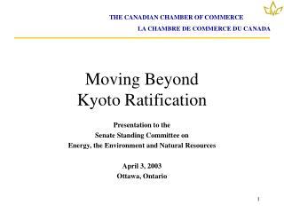 Moving Beyond  Kyoto Ratification