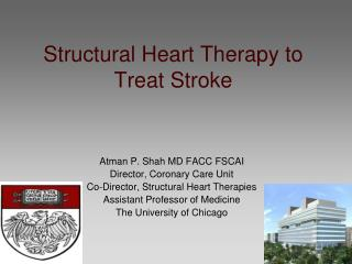 Structural Heart Therapy to Treat Stroke