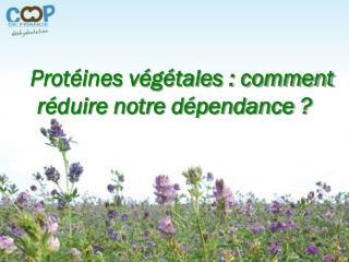 Protéines végétales : comment réduire notre dépendance ?