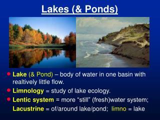 Lakes (& Ponds)