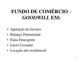 FUNDO DE COMÉRCIO –  GOODWILL  EM: