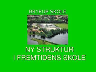 NY STRUKTUR   I FREMTIDENS SKOLE