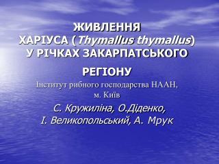 .  Європейський харіус –  Thymallus thymallus (L)