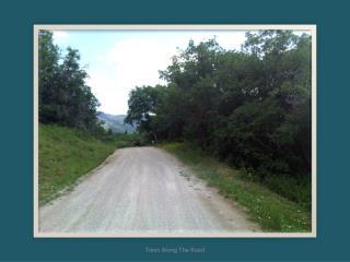 Aspen_Hills_-_920