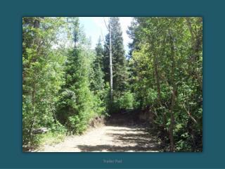 Aspen_Hills_-_825