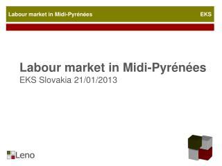 Labour  market  in Midi-Pyrénées EKS  Slovakia  21/01/2013