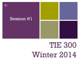 TIE 300 Winter 2014