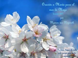 Oración  a  María  para el mes de  Mayo ( oración  667)