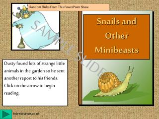 Snails and Other Minibeasts