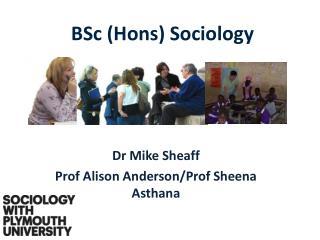 BSc ( Hons ) Sociology