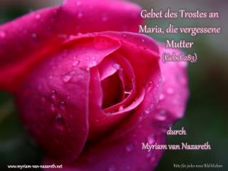 Gebet des Trostes an Maria, die vergessene Mutter ( Gebet 283 )
