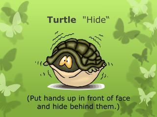 "Turtle   ""Hide"""