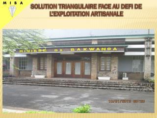 SOLUTION TRIANGULAIRE FACE AU DEFI DE L'EXPLOITATION ARTISANALE