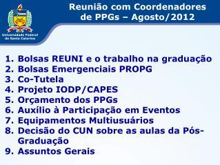 Bolsas REUNI e o trabalho na graduação Bolsas Emergenciais PROPG Co-Tutela Projeto IODP/CAPES