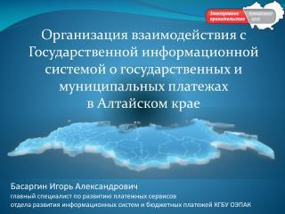 Басаргин  Игорь Александрович главный специалист по развитию платежных сервисов