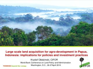 Large scale land acquisition for agro-development in Papua, Indonesia: implications for policies and investment practice