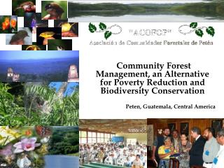 Community Forest Management, an Alternative for Poverty Reduction and Biodiversity Conservation