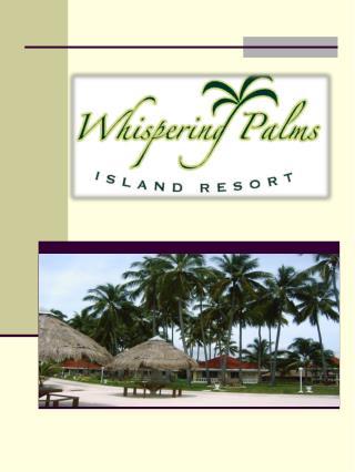 Im ersten Gang heißt Sie Ihr  Whispering-Palms – Team herzlich willkommen ***