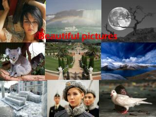 Beautiful pictures