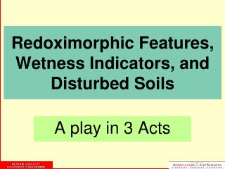 Redoximorphic Features,  Wetness Indicators, and Disturbed Soils