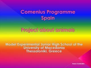 Comenius  Programme Spain Project about animals