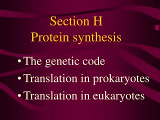 Section H Protein synthesis