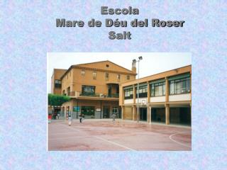 Escola Mare de Déu del Roser Salt