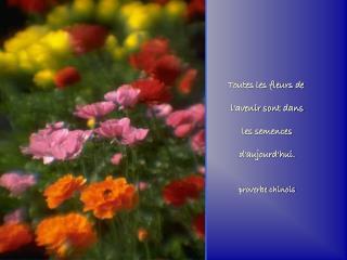 Toutes les fleurs de  l'avenir sont dans  les semences  d'aujourd'hui. proverbe chinois