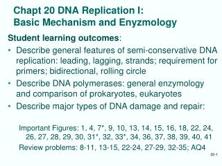 Chapt 20 DNA Replication I: Basic Mechanism and Enyzmology