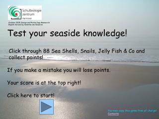 Test your seaside knowledge!