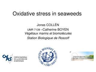 Oxidative stress in seaweeds