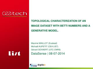 Topological characterization  of an image  dataset with  Betti  numbers  and a  generative  model.