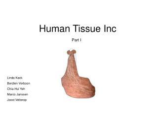 Human Tissue Inc