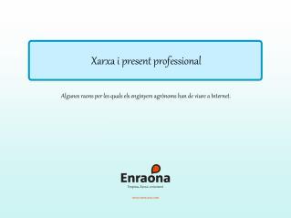 Xarxa i present professional
