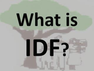 What is  IDF ?