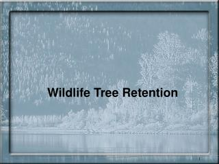 Wildlife Tree Retention