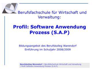 Berufsfachschule für Wirtschaft und Verwaltung:  Profil: Software Anwendung Prozess (S.A.P)