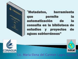 Lic. Maria Elena del Carmen Lagos Santoyo