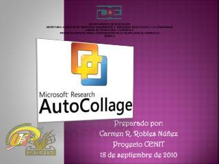 Preparado por:  Carmen R. Robles N��ez Proyecto CENIT 18 de septiembre de 2010