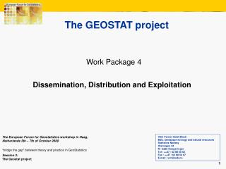 The GEOSTAT project