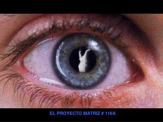 EL PROYECTO MATRIZ # 116A