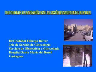 Dr.Cristóbal Fábrega Belver Jefe de Sección de Ginecología Servicio de Obstetricia y Ginecología