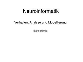 Neuroinformatik