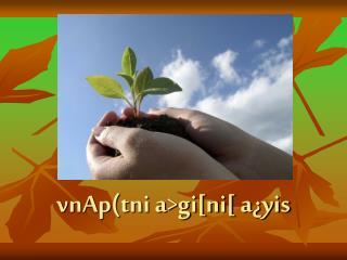 vnAp(tni a>gi[ni[ a¿yis