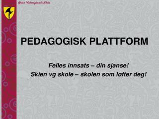 PEDAGOGISK PLATTFORM