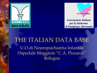 THE ITALIAN DATA BASE