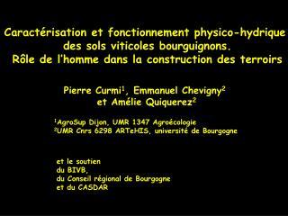 Caractérisation et fonctionnement physico-hydrique  des sols viticoles bourguignons.