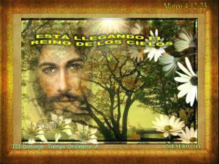 III Domingo   Tiempo Ordinario .A .